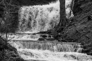 Scaleberforcewaterfall_settle_7579