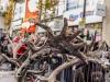 bradford+reindeer+parade_6291