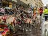 bradford+reindeer+parade_9149
