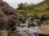 bronte+waterfall+haworth_9926