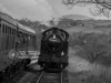 churnet+valley+railway+spring+gala+2018_0048