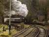 churnet+valley+railway+spring+gala+2018_9765