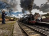 churnet+valley+railway+spring+gala+2018_9961