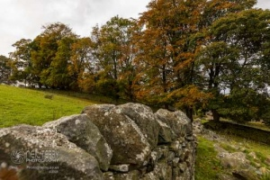 Whinburnhall_Keighley_7048