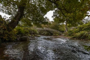 cliffecastlekeighley_7090