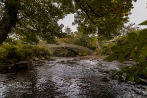 cliffecastlekeighley_7092
