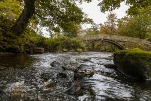 cliffecastlekeighley_7097