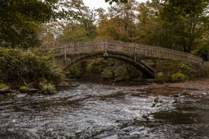 cliffecastlekeighley_7101