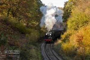 NorthYorkshireMoorsRailway_7504