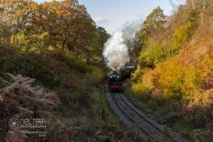 NorthYorkshireMoorsRailway_7509