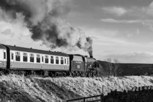 NorthYorkshireMoorsRailway_7604