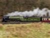 60163+tornado+east+lancashire+railway_4850