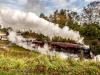 East_Lancashire_Railway_Autumn_Steam_Gala_2018_ELR_2257