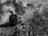 East_Lancashire_Railway_Autumn_Steam_Gala_2018_ELR_2391