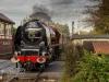 East_Lancashire_Railway_Autumn_Steam_Gala_2018_ELR_2435