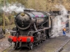Haworth_6931