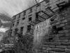 Bradford+decay_1556