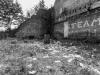 Bradford+decay_1572
