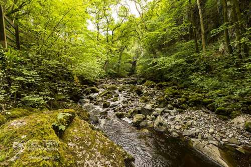 ingleton+water+trail_2626