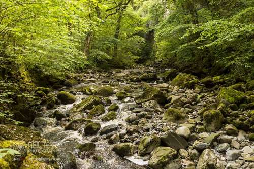 ingleton+water+trail_2627