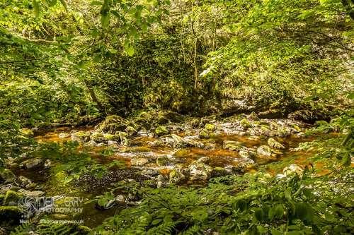 ingleton+water+trail_2641