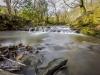 judy+woods+bradford_1871
