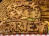kirby+misperton+frack+free+ryedale+harvest+festival_2853