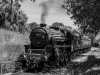 KWVR+keighley+worth+valley+railway+50+anniversary+gala_3191