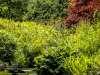 ListerPark_Manningham_Bradford_9031