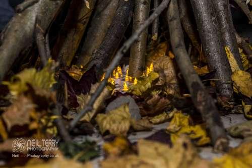 wild+woods+bradford_6153