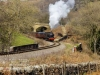 NYMR_north+yorkshire+moors+railway_4564