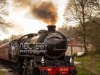 NYMR_north+yorkshire+moors+railway_4817
