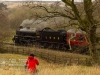 NYMR_north+yorkshire+moors+railway_4860