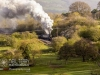 NYMR_north+yorkshire+moors+railway_4903