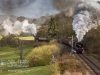 NYMR_north+yorkshire+moors+railway_4931