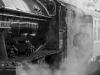 North_Yorkshire_moors_Railway_Autumn_Steam_Gala_2018_NYMR_0791