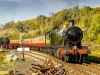 North_Yorkshire_moors_Railway_Autumn_Steam_Gala_2018_NYMR_0970