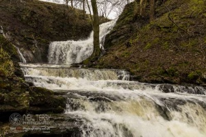 Scaleberforcewaterfall_settle_7542