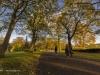 peel+park+bradford+autumn_4244