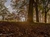 peel+park+bradford+autumn_4255