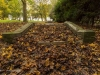 peel+park+bradford+autumn_4274