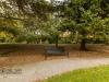 peel+park+bradford+autumn_4282