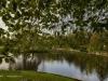 peel+park+bradford+autumn_4295