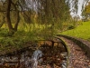 peel+park+bradford+autumn_4298