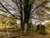 undercliffe+cemetery+bradford_4360