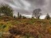 undercliffe+cemetery+bradford_4385