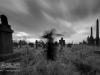 undercliffe+cemetery+bradford_4392