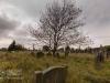 undercliffe+cemetery+bradford_4396