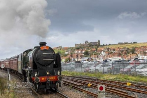 Whitby_0965