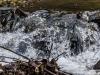 woodside+waterfall+judywoods+bradford_9154